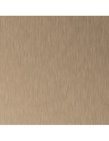 AL06 Brushed Bronze 3050x1310x0,8